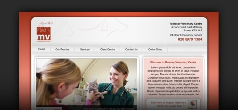 Website design for Molesey Vets (Surrey)